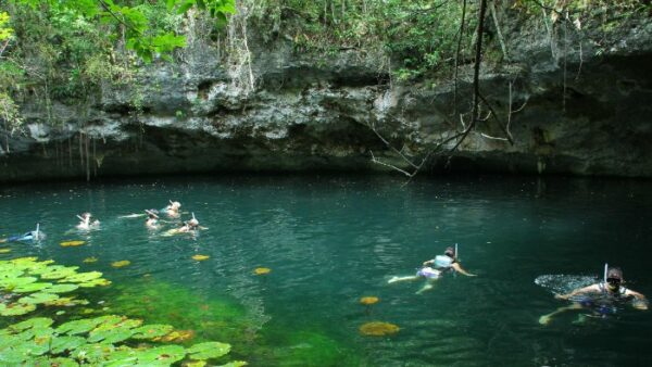 Open Cenotes in Riviera Maya