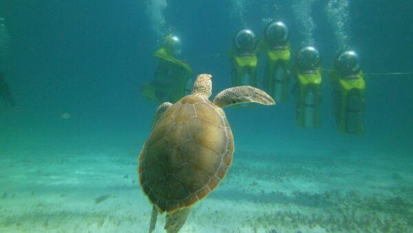 Submarine-Tour-Cancun