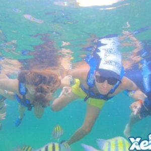 Dolphin Ride Combo