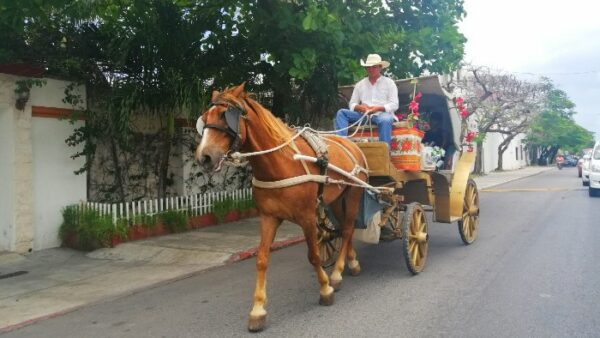 Cozumel Carriages