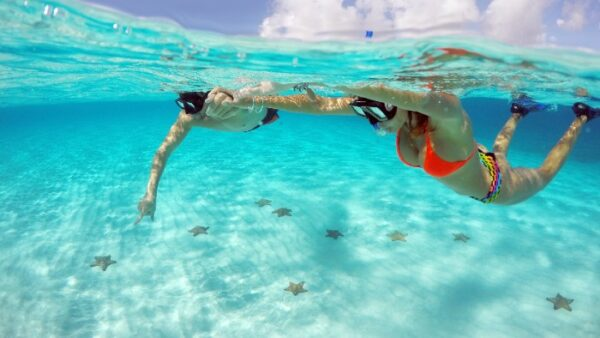 El Cielo Snorkeling Tour Cozumel