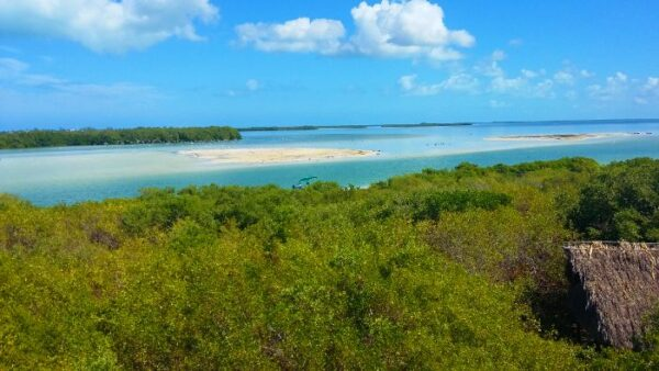 Holbox Tour from Cancun