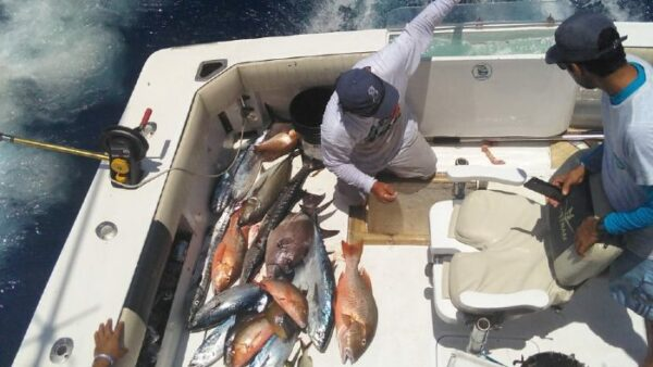 Best Fishing Boats in Cancun